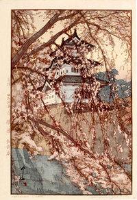 Hiroshi_castle