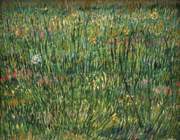 Van_gogh__patch_of_grass_2